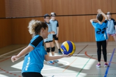 k-Volleyturnier_1DX_039000_170325
