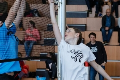 k-Volleyturnier_1DX_039012_170325
