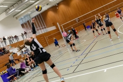 k-Volleyturnier_1DX_040558_170326